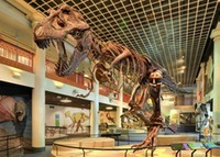 Museum - Academy of Natural Science - dinohall-trex 510