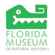 Museum - Florida Museum of Natural History Logo