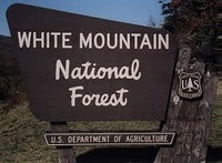 USFS White Mtn NF SIgn